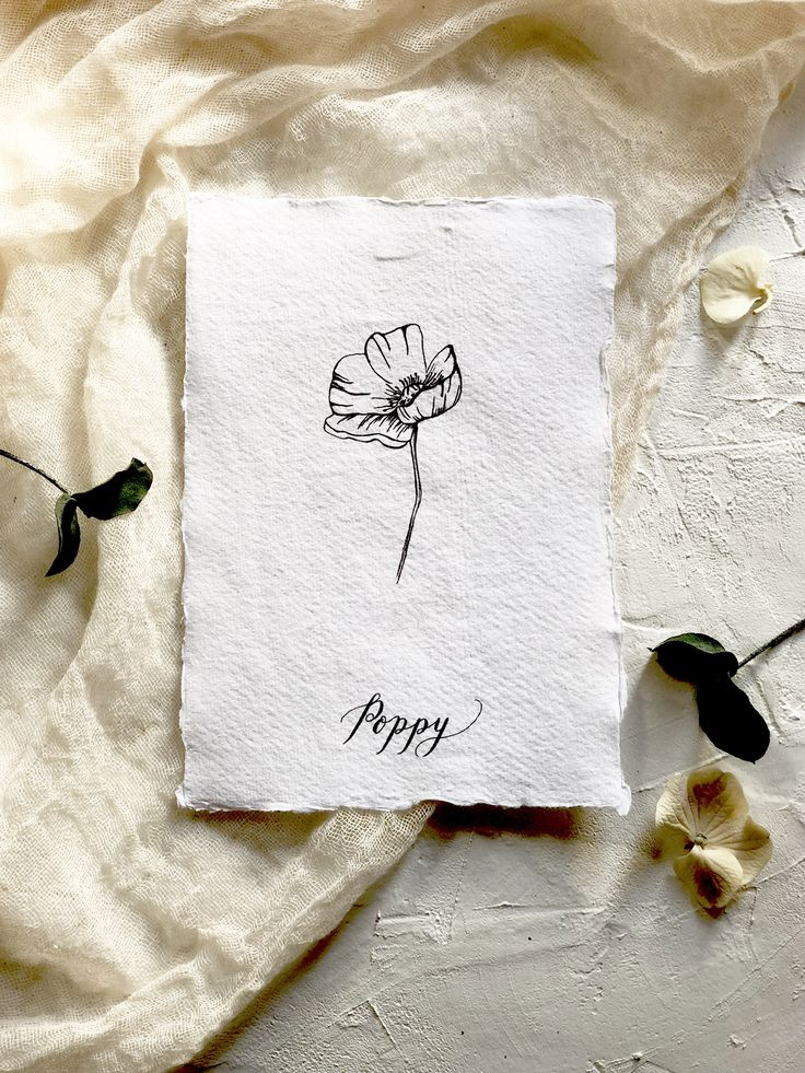 Botanical illustration art print.  Modern florals. The Poppy- flower of relaxation