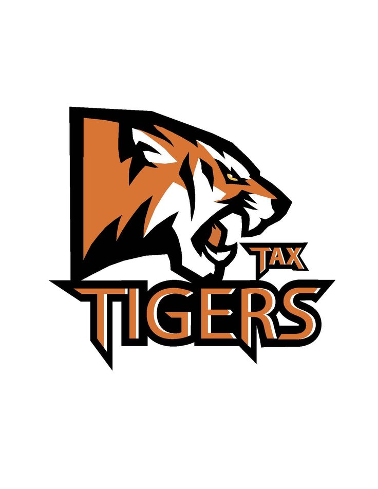 My Cricket team's Logo - Tax Tigers -Hyderabad