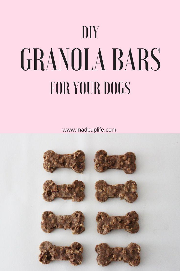 Diy Granola Bar Dog Treats Diy Dog Treats Homemade Dog Cookies