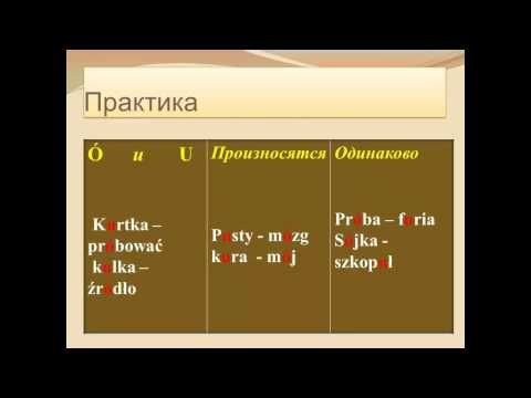 Мастер-Класс по фонетике польского языка от Светланы Серегиной и Olz.by - YouTube