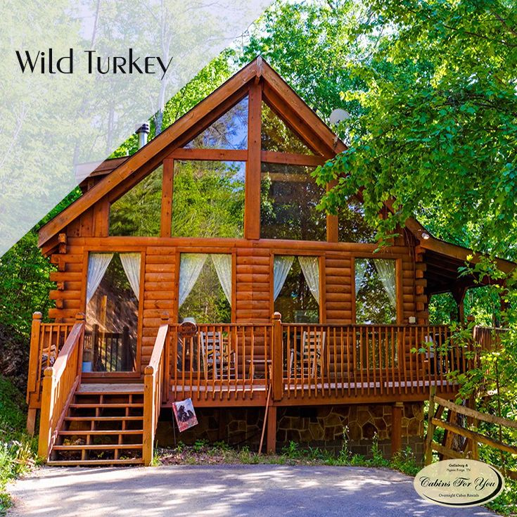 A cozy 1 bedroom + loft cabin located in Pigeon Forge, Tennessee, Wild Turkey boasts soaring ceilings, floor-to-ceiling windows, and pool access.