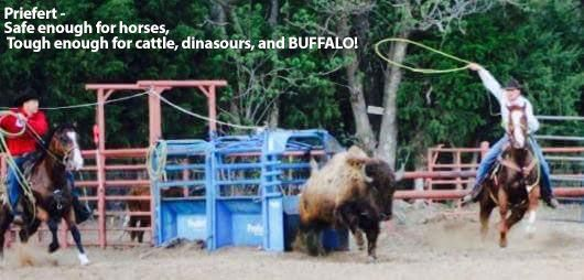 Safe enough for horses - Tough enough for cattle, dinosaurs and BUFFALO!