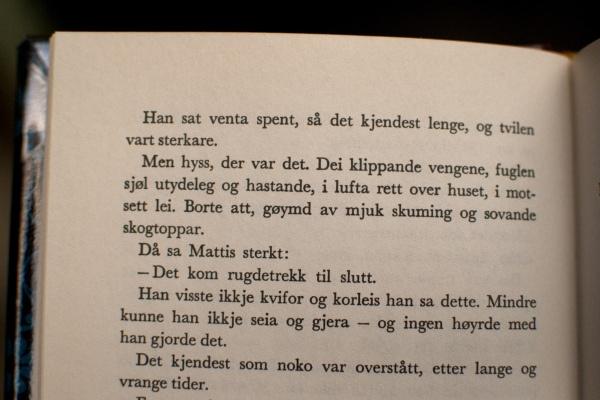"""Mattis fra Tarjei Vesaas' """"Fuglane"""""""