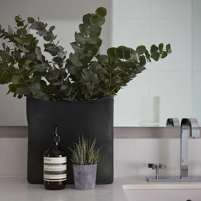 Clean fresh styling in the master bedroom bathroom #eucalyptus #vase #bathroom #interiorstyling #sophiepatersoninteriors
