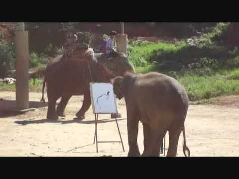 The Truth about Elephant Paintings [I'm no longer worried about them being mistreated. ]