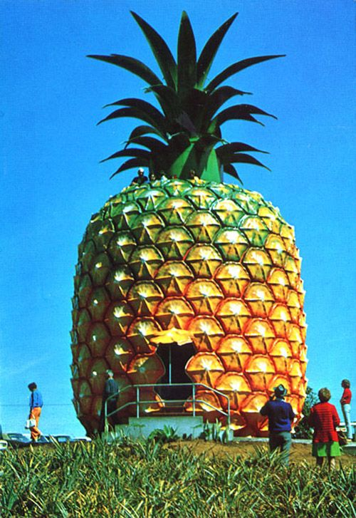 Big Pineapple is a tourist attraction and working farm situated at Woombye near Nambour, Queensland