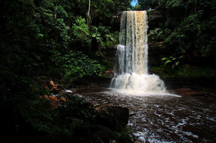 Be sure to check out the Kipungit Waterfall at Poring Hot Springs in Kundasang. Must see!