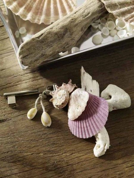 Images Of Seashell Crafts