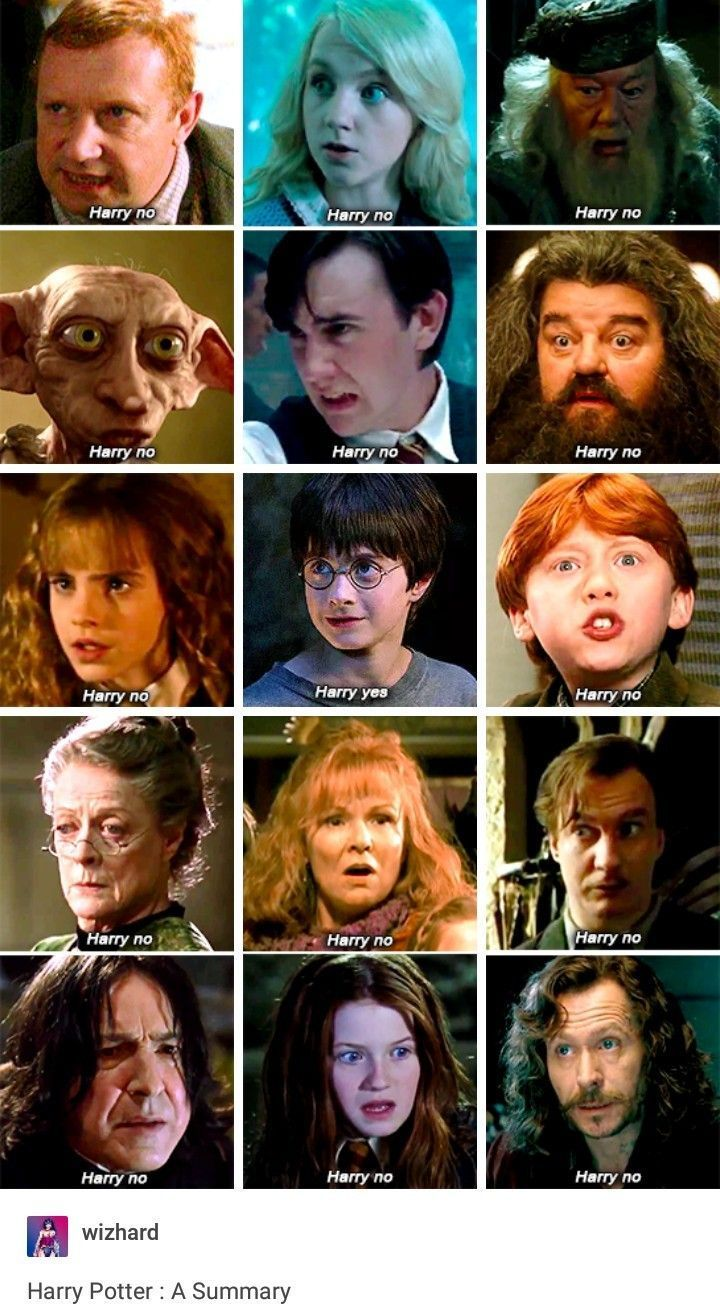 Different Voices These Weird Else Read Herz Harry Potter Memes Hilarious Harry Potter Funny Harry Potter Puns