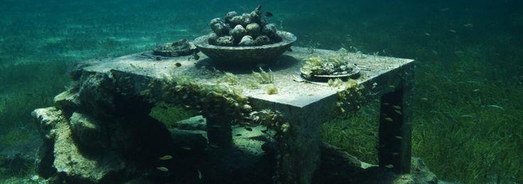 Musa Cancun English site
