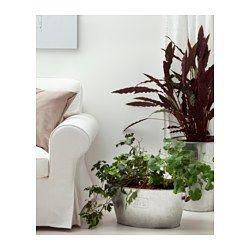 übertöpfe Für Zimmerpflanzen die besten 25 übertöpfe ikea ideen auf up