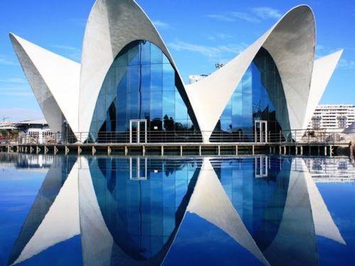 17 best images about city of arts sciences on pinterest for Aquarium valencia bar