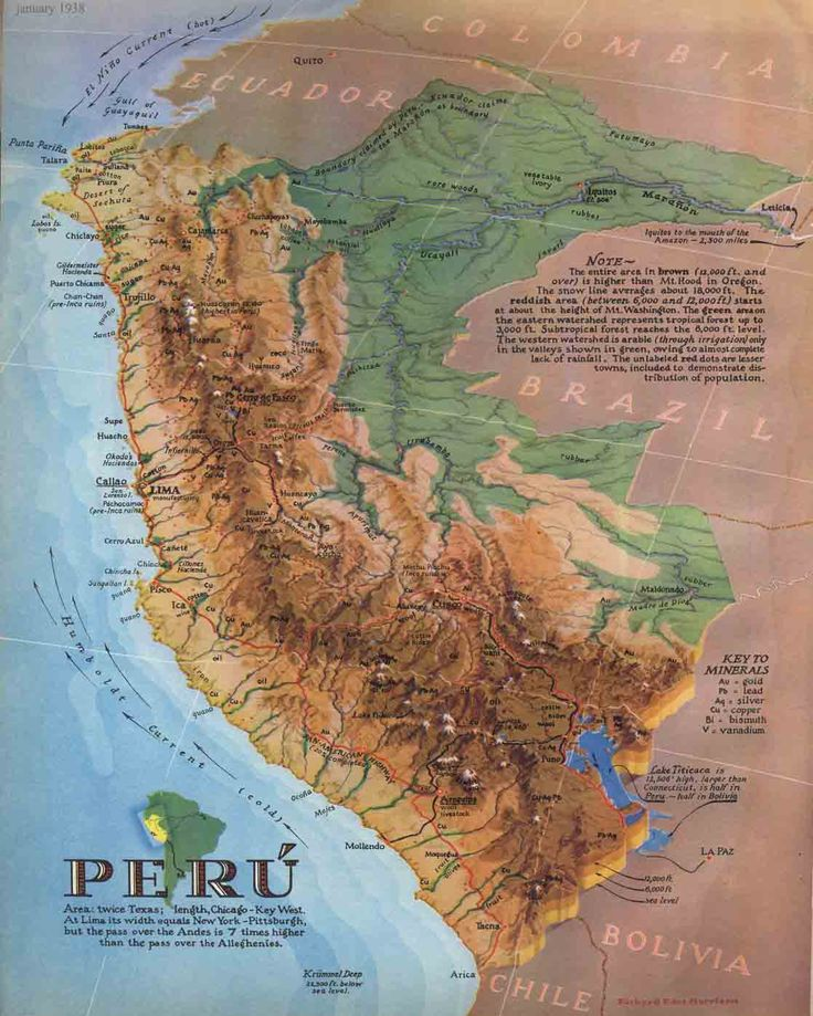Vintage infographic Map of Peru The 39