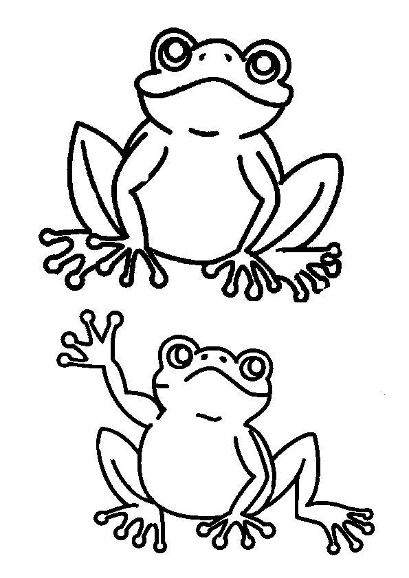 226 best images about coloriages de poissons et animaux marins on pinterest belle mandalas - Coloriage de grenouille ...
