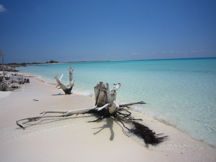 Cuba - Cayo Largo  is one of the most beautiful islands in the Caribbean sea
