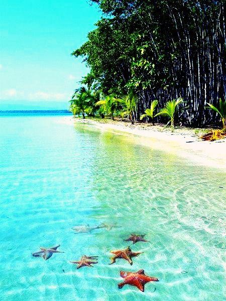 Nager avec les étoiles I #Panama I
