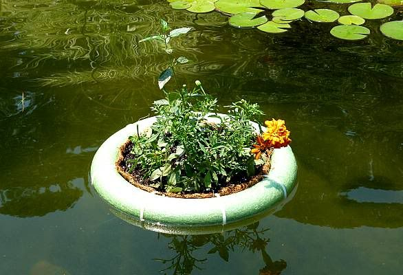 25 best ideas about plastic pond on pinterest water for Fish pond materials