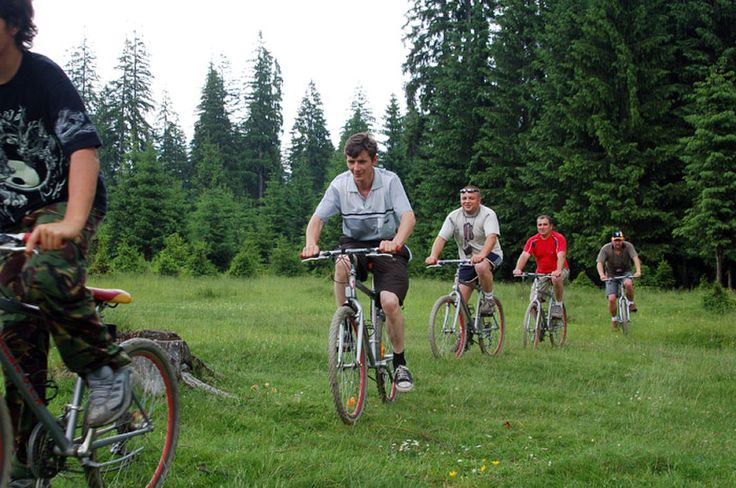 cycling through the forest to the mountain road