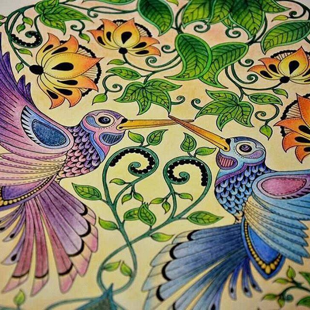 #johannabasfordsecretgarden #johannabasford #omalovanky #coloring #pastelky #crayons #kinpolycolor