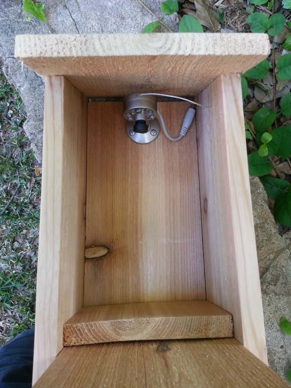 Birdhouse with installed Wireless Video camera by Birdieviews, $70.00