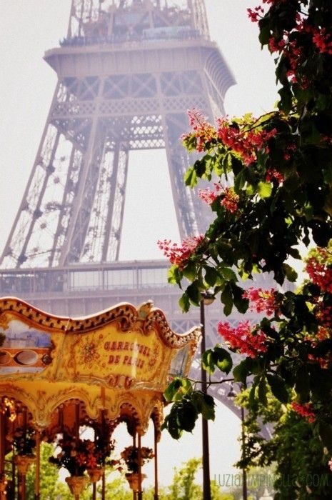 Paris - the carousel across from the Eiffel Tower is just so magical and old-world-y!