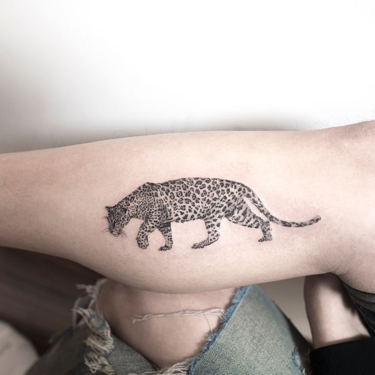 Jaguar #jaguar #tattoo #hongdam #타투 #홍담
