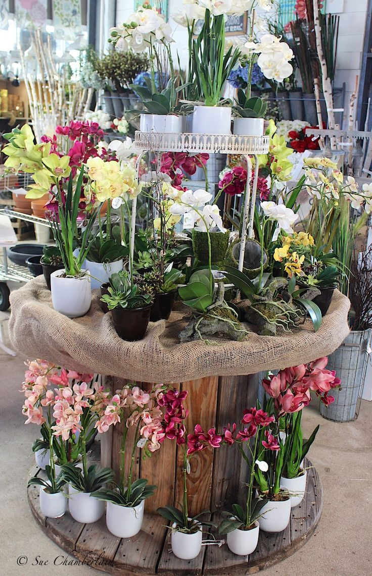 306 Best Images About Garden Center Merchandising Display