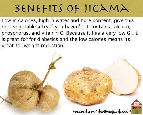 jicama fruit fruits in season