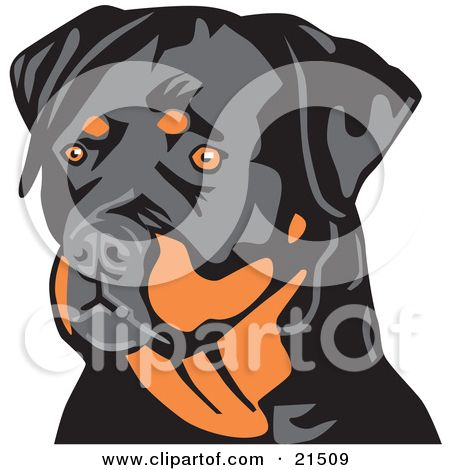 Royalty Free Rf Rottweiler Clipart Illustrations