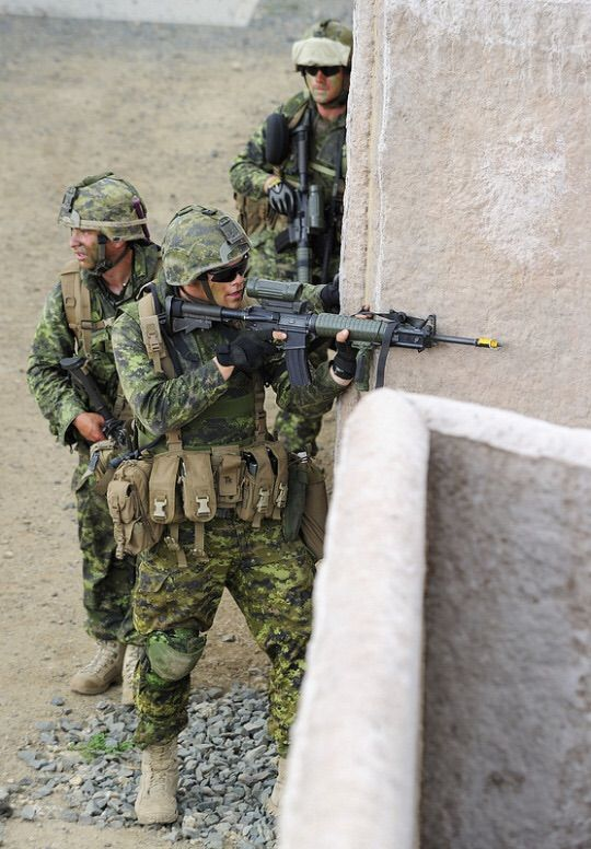 Canadian soldiers with A Company, 2nd Battalion, Princess Patricia's Canadian Light Infantry, conducts Military Operations in Urban Terrain (MOUT), at the Marine Corps Training Area Bellows (MCTAB), Waimanalo, Hawaii, on July 30 2012.