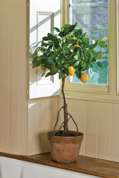 Our Lovely Faux Lemon Tree Is So Realistic You Ll Be