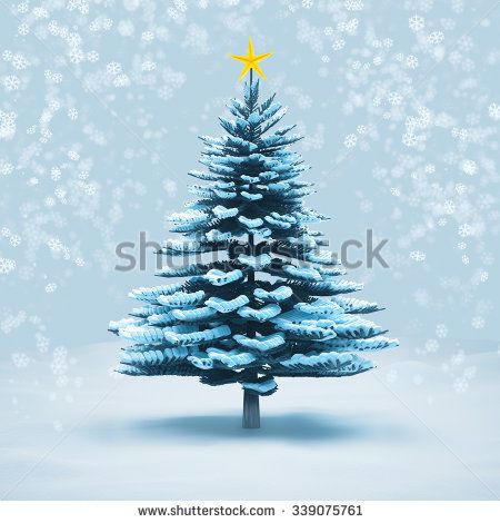 front view snow christmas tree pine isolated on white background.
