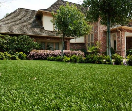 Best Artificial Grass Cost and Quality