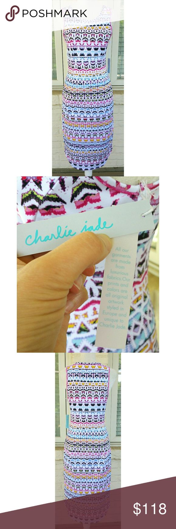 NWT, Charlie Jade Scuba Midi Multi Print Dress Bright, colorful and fun is this Charlie Jade Scuba multi print sleeveless midi dress. Has a nice stretch to it for added comfort. Polyester/Spandex. I have two sizes available. Charlie Jade Dresses