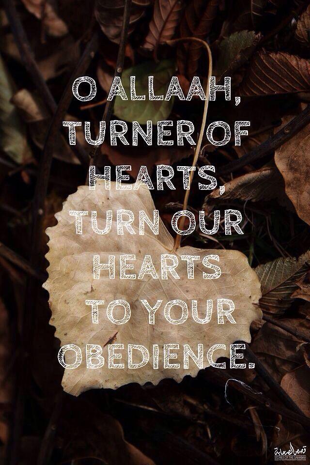 I love Allah (subhanahu wa ta'ala)