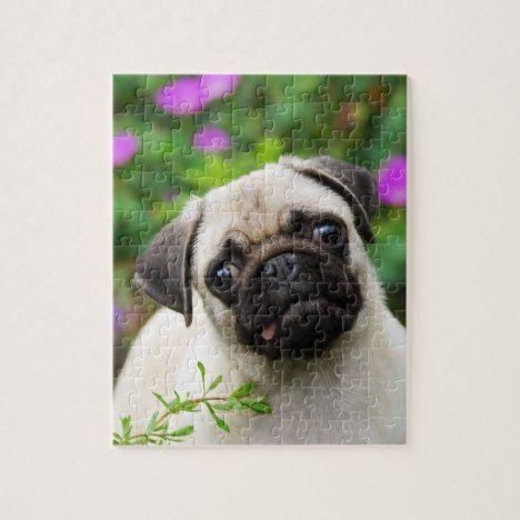 Cute fawn pug puppy jigsaw puzzle #dog #dogs #doglover #doggifts