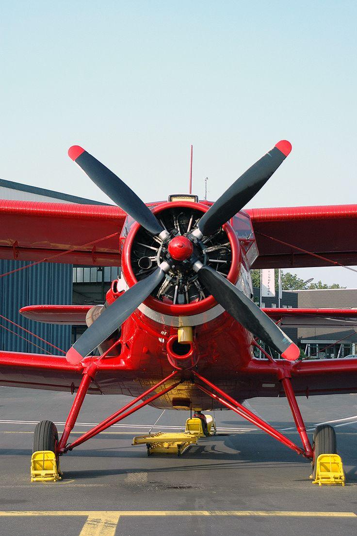 Air Albatros Antonov AN-2T; D-FONE