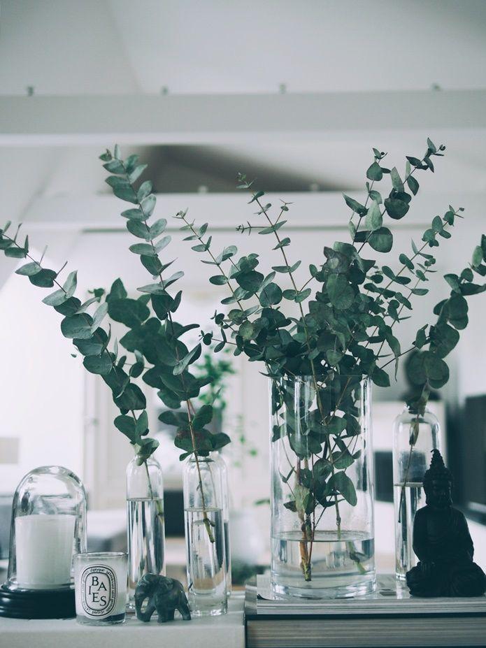 """BEAUTIFUL GREEN EUCALYPTUS BRANCHES IN MY HOME De fleste bruke disse nydelige eukalyptus grenene som """"fyllmasse"""" i pene buketter. Jeg liker å la de spille hovedrollen og har de ofte rundt om i vaser slik som dette. De er billige, de står i en evighet også er de veldig fine! Most people use these gorgeous"""