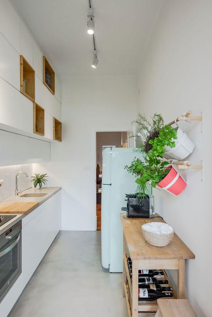 Decoração de apartamento pequeno, decoração minimal, paredes brancas, porta de madeira, cozinha, cozinha clean, horta em casa.