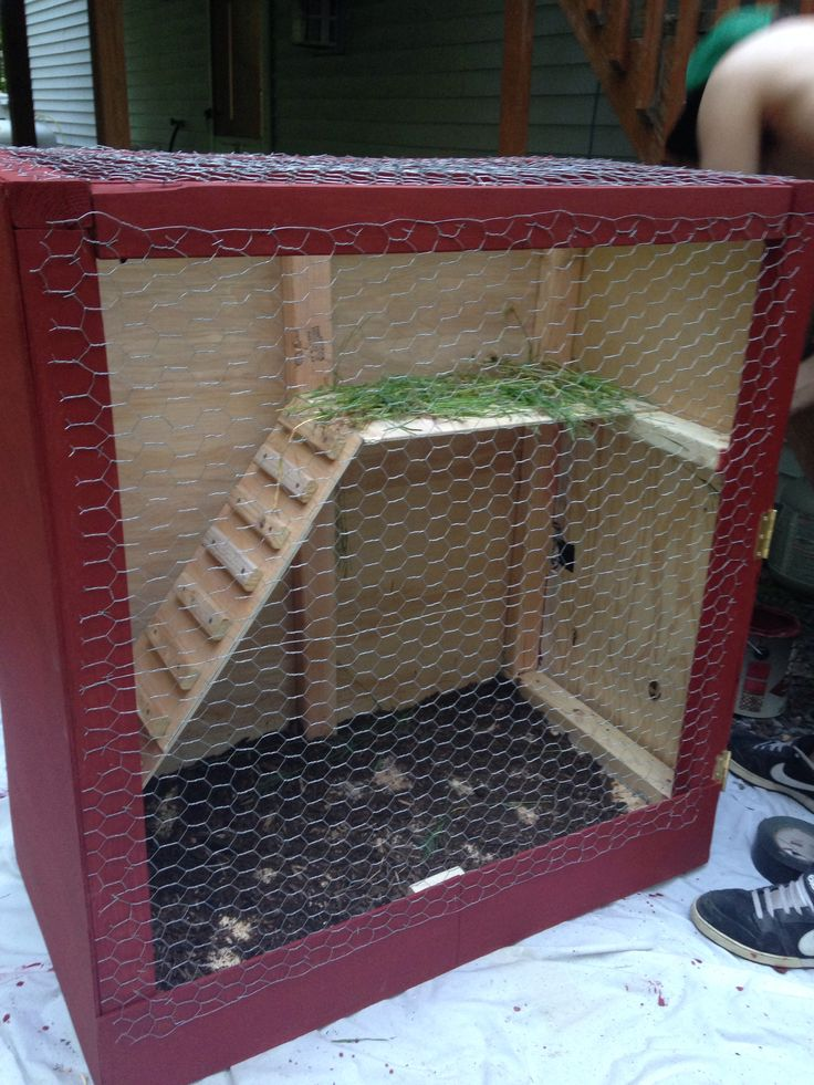 Homemade iguana cage- it's funny how it's almost like a rabbit hutch. I like the multi-level concept though.