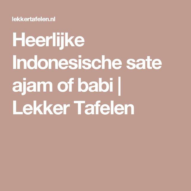 Heerlijke Indonesische sate ajam of babi   Lekker Tafelen
