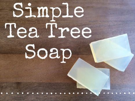 Recipe: Simple Tea Tree Soap! Enjoy! :) http://www.bulkapothecary.com/blog/soap-recipes/recipe-tea-tree-soap/