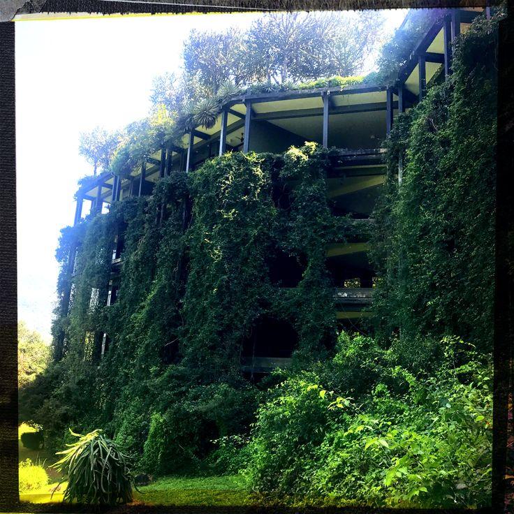 Visiting secluded, wonderful retreat  #heritance #kandelama