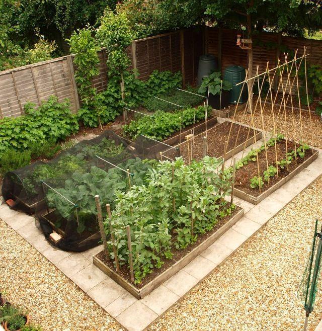 Gemüsegarten-Layout – für kleine Räume – #forsmallspaces #für #Gemüsegarten…
