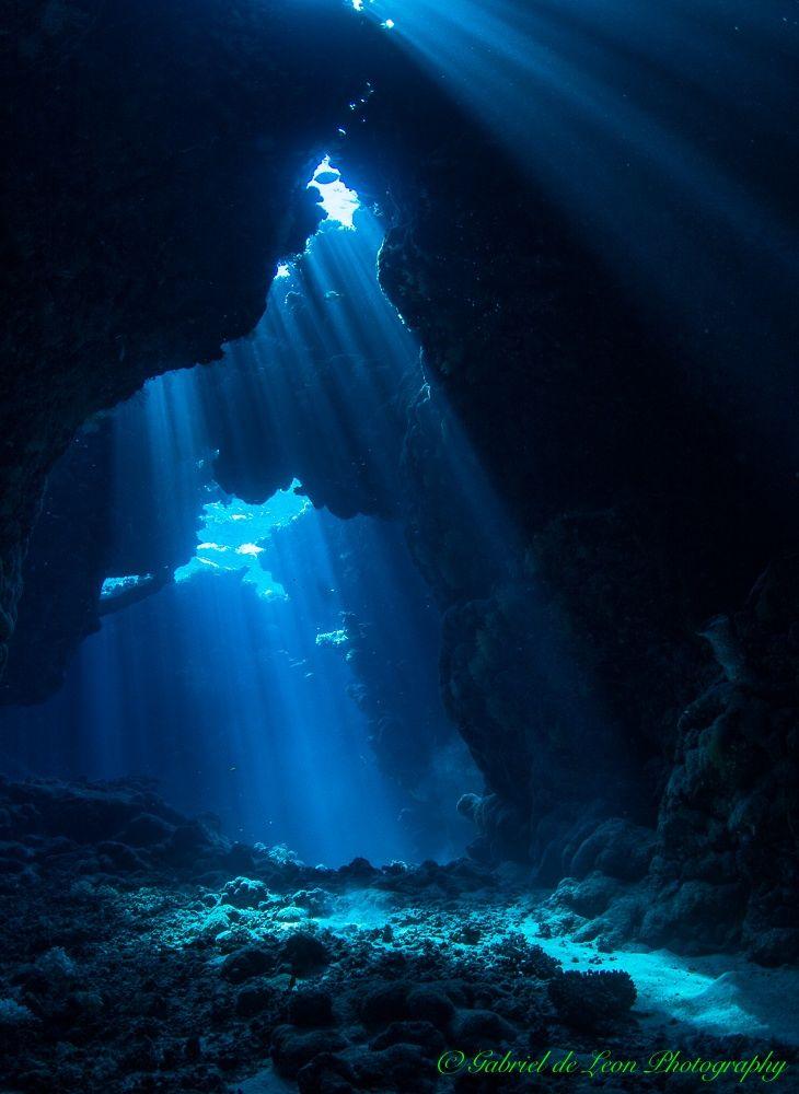 121 best images about demons on pinterest kraken knight