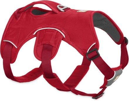 The Ruffwear Web Master is a supportive, multi-use dog harness built for maneuvering and assisting adventurous dogs up and over any obstacles that might stand in their way. Available at REI, 100% Satisfaction Guaranteed.