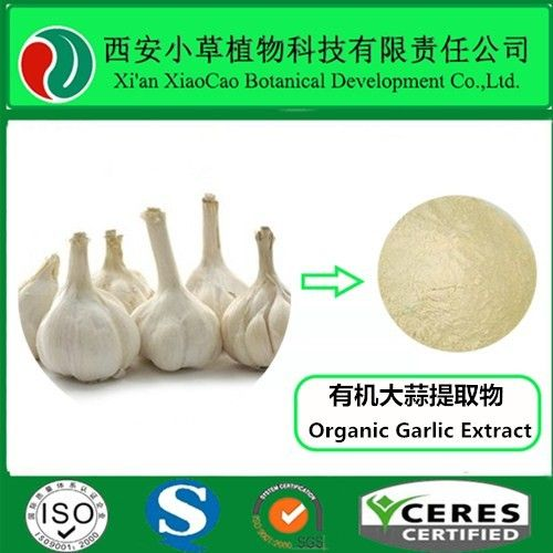 Organic Garlic Extract Latin Name: Allium Sativum L. Specification: Allicin 1% Alliin 2%-5% Active ingredient: Allicin, Alliin Molecular Formula: C6H10OS2(Allicin) Molecular Weight: 178.33(Allicin) CAS No.: 539-86-6 Appearance: Light-yellow powder Shelf life: 2 years Ingredients: Allicin, Alliin, Polysaccharide Specification: Advantage: Odorless garlic extract products
