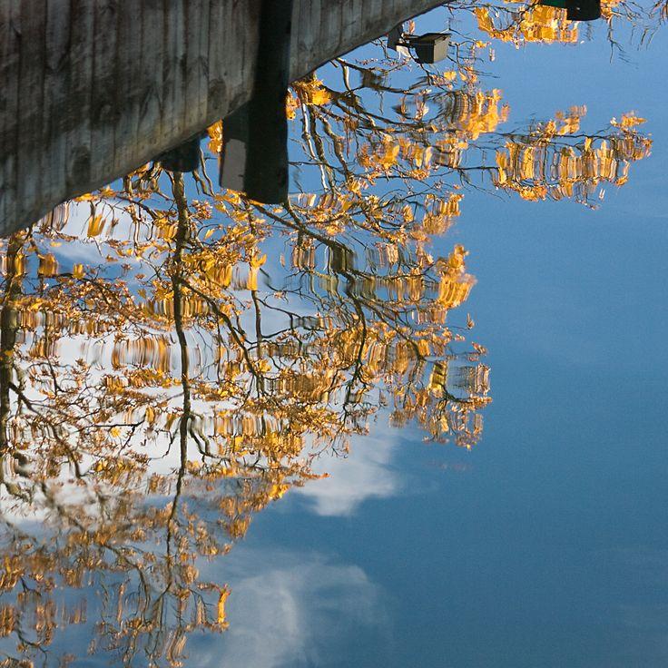 Autumn colors by Aili Alaiso Finland