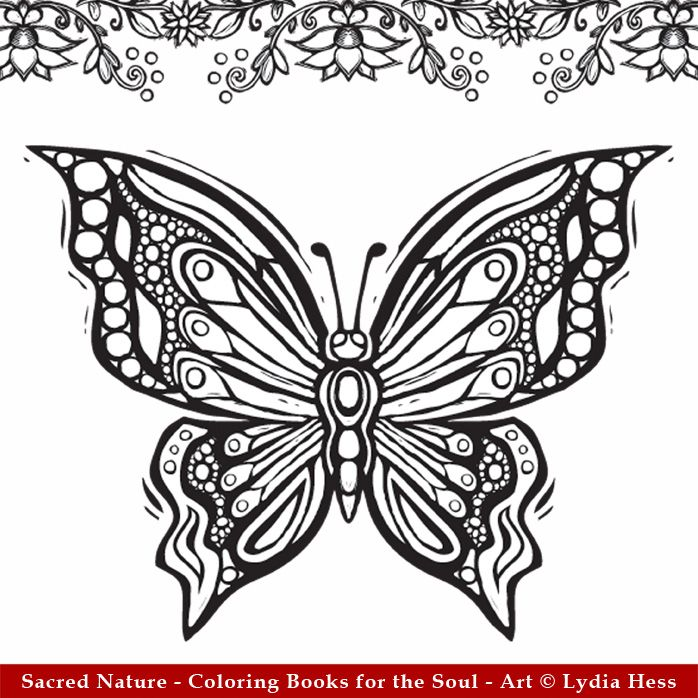 Adult Coloring Books Butterflies