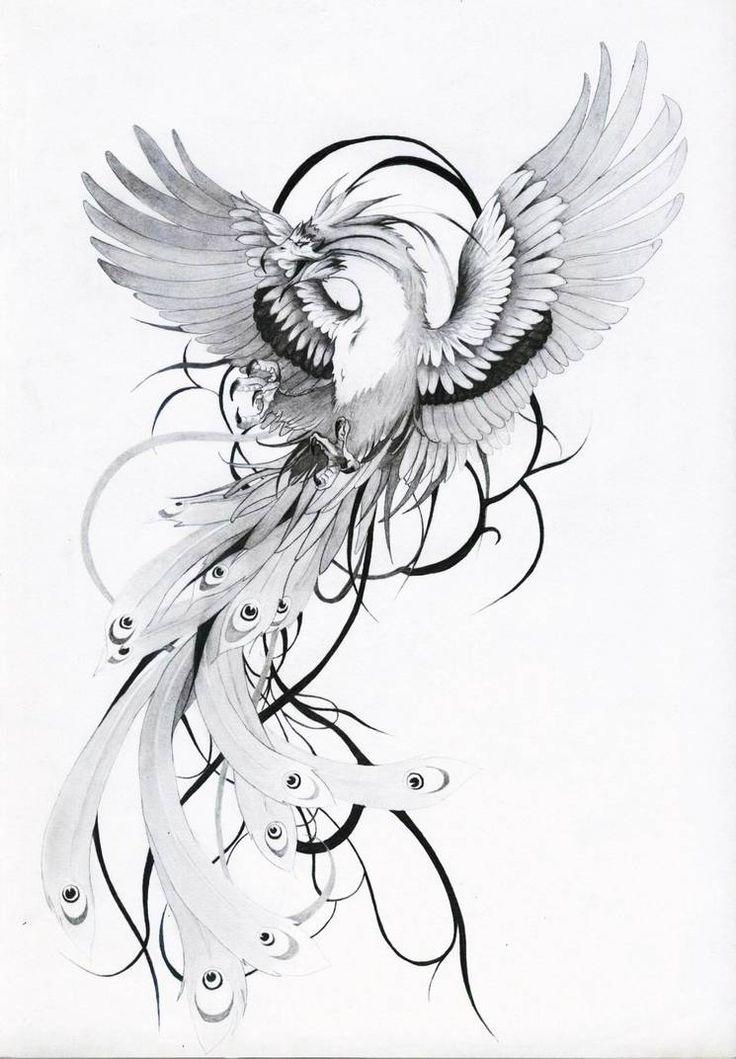 phenixstenev on deviantart  tatouage phoenix dessin